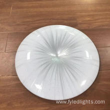 Morden LED Ceiling Lamp