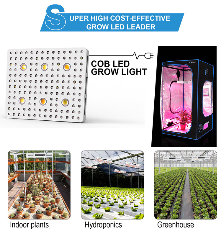 Phlizon COB Grow Light