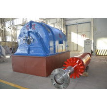 Three Phase Turbine Generator from QNP