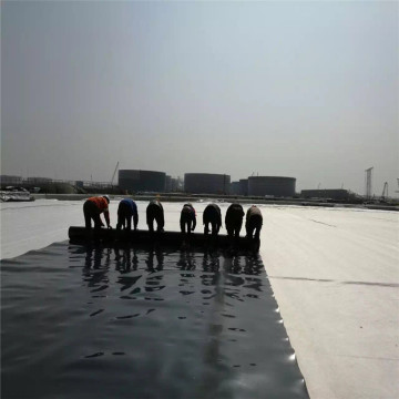 Plastic Sheet 100% Virgin Material Geomembrane