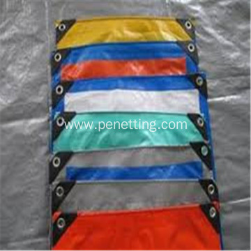 PE Woven Fabric +Laminated outside Tarpaulin Fabric
