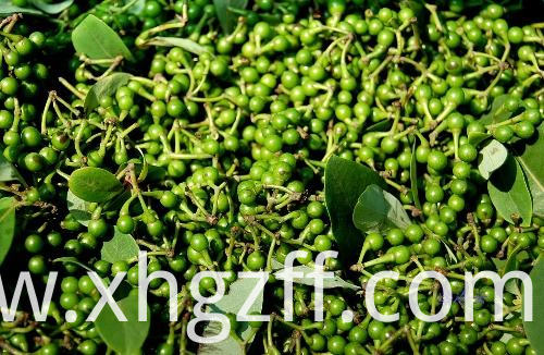 High-quality Litsea Cubeba Essential Oil