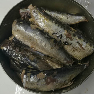 RO900 Canned Sardines In Vegetable Oil