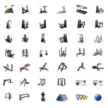 1000㎡ complete commercial gym equipment package