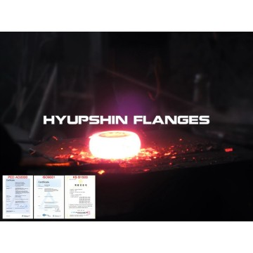 Forging / Forged Pipe Flange Stainless Steel Flanges