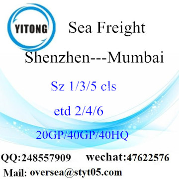 Shenzhen Port Sea Freight Shipping To Mumbai