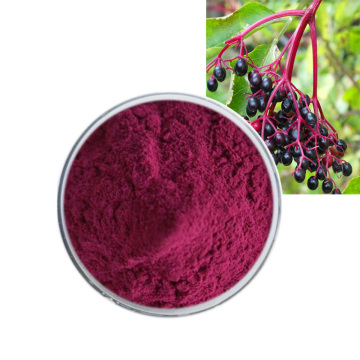 organic black elderberry fruit powder