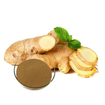 Natural ginger root extract herbal supplement