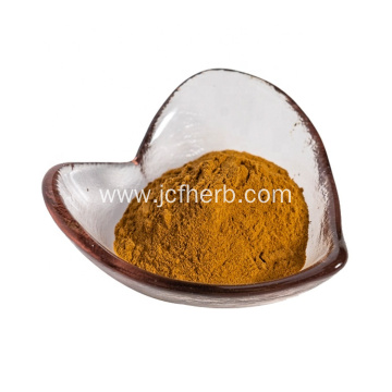 high quality largehead atractylodes root extract powder 10:1