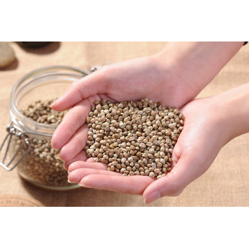 Wholesale Low Price High Purity Hemp Seed