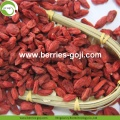 Factory Wholesale Dried Natural Wolfberry