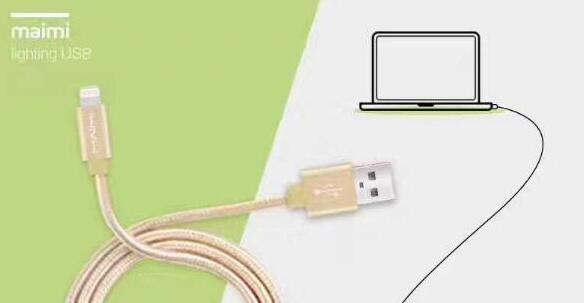 long apple charging cord