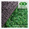 Turf Grass for Golf Field