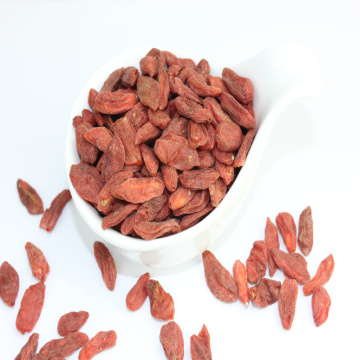 High nutrition  Chinese Herb Medicine goji berry