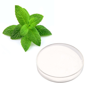 sweetener powder stevia leaf extract white powder