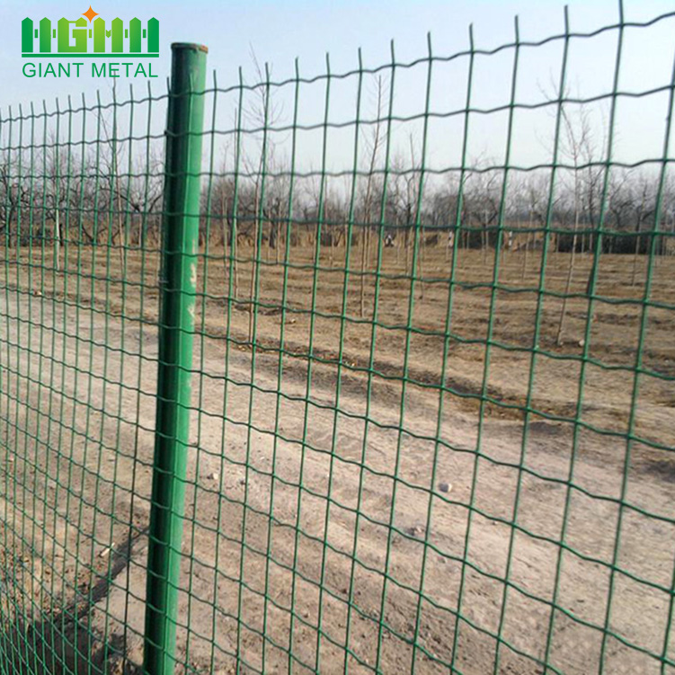 Hot Sale PVC Coated Euro Panel Fence