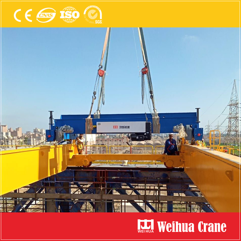 Europe Hoist Trolley Installation