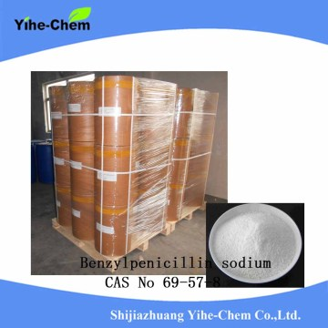 high quality Raw Material Penicillin G sodium salt