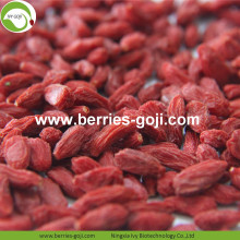 Wholesale Fruit Diet Eu Standard Goji Berries