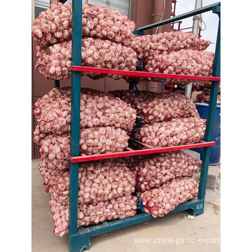 Fresh Red / Normal White Garlic 4.5CM