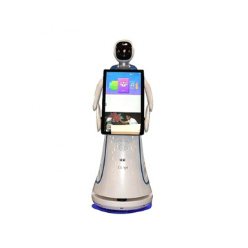 Reception Service Robot In The Mall