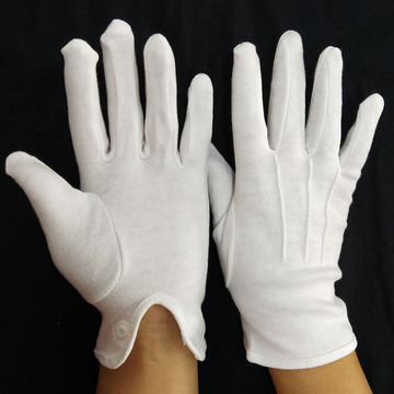 Director's Showcase White Cotton Gloves