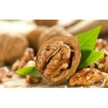 Raw walnuts without shell