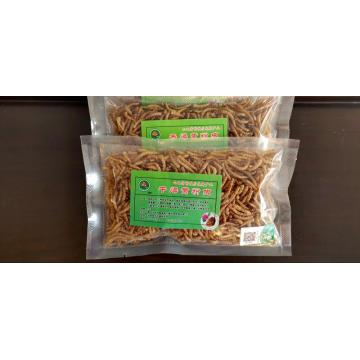 pets feed of yellow mealworm