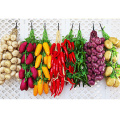 Artificial Simulation Food Vegetables Fruit PU Red Pepper Fake Lemon Vegetables For Home Restaurant Kitchen Garden Art Decor Pro
