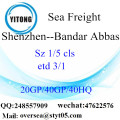 Shenzhen Port Sea Freight Shipping To Bandar Abbas