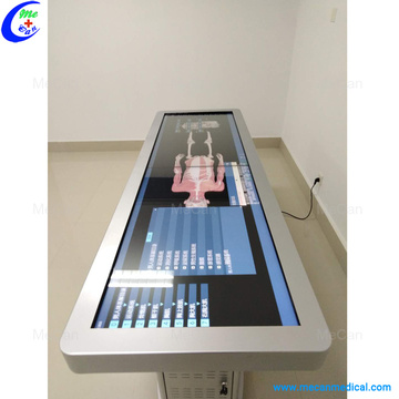 Medical Human Anatomy Virtual System