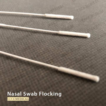 Nasopharyngeal Swab for Viral Culture NP