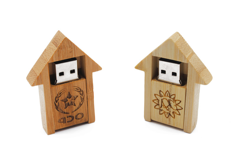 House Usb Flash Drive