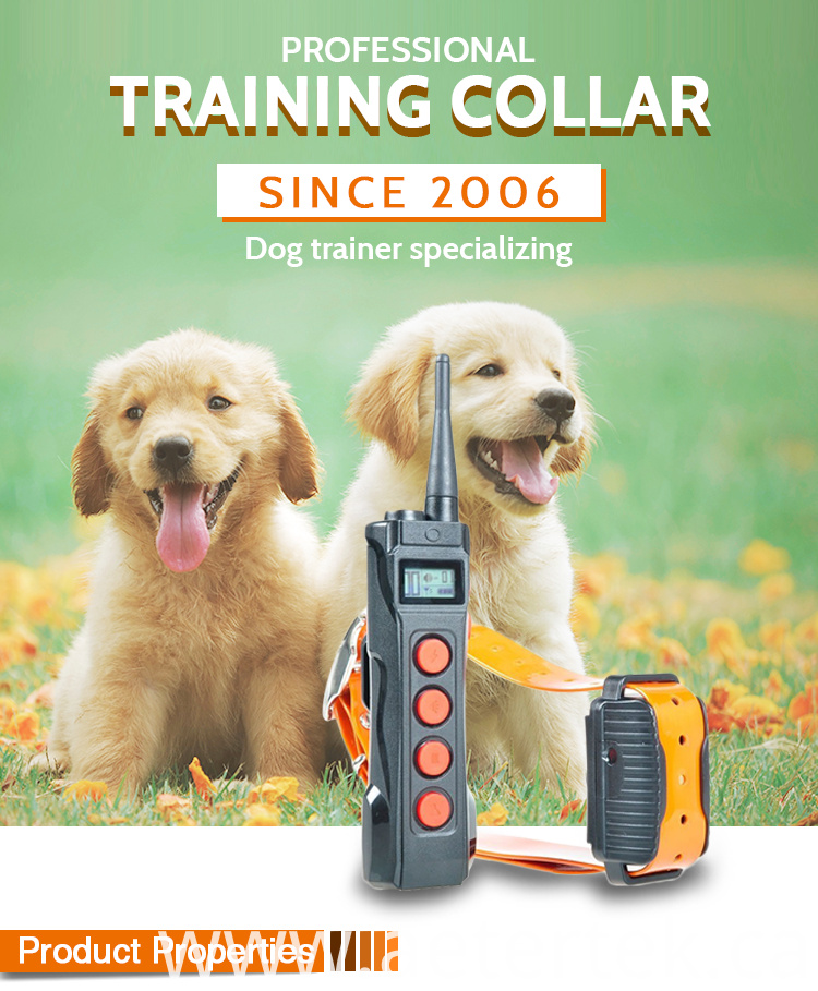 Training Anti Bark Collar Aetertek AT-919C