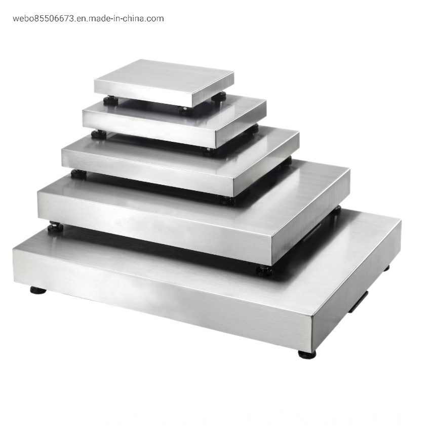 Weighing Stainless Steel Scale