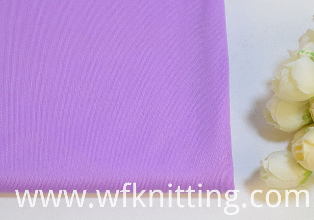Polyester DTY Interlock Fabric