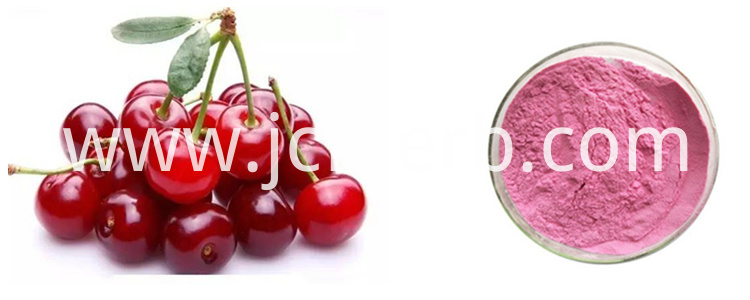 Acerola Cherry Powder VC 17% 25%